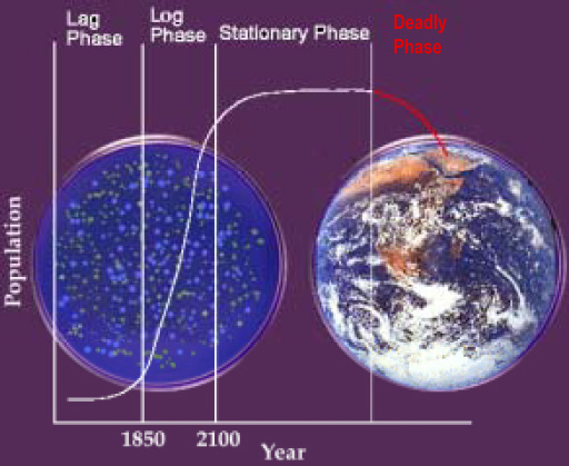 Petri-dish Earth -- illustration  by the US National Science Foundation